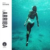 Arriba by Sara Martin