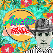 La Comadre de Aniceto Molina
