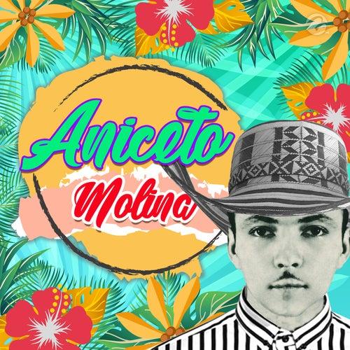 La Comadre by Aniceto Molina