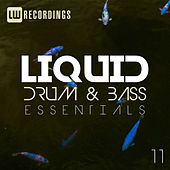 Liquid Drum & Bass Essentials, Vol. 11 - EP by Various Artists
