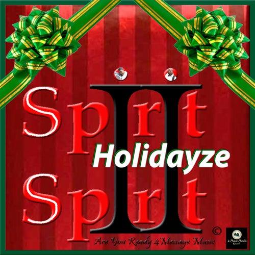 Holidayze by Spirit 2 Spirit