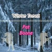 Winter Forest de Pat Boone