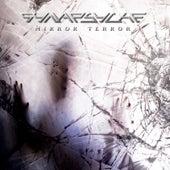 Mirror Terror by Synapsyche
