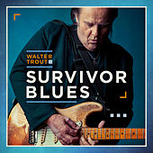 Me, My Guitar And The Blues de Walter Trout