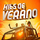 Hits de verano de Various Artists
