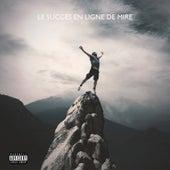 Le succès en ligne de mire by Various Artists