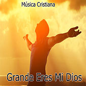 Grande Eres Mi Dios de Various Artists