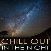 Chill out in the Night von Various Artists