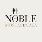 Moscas en la Casa de Ivan Noble