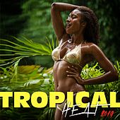 Tropical Heat 2019 de Various Artists