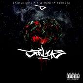Bajo la Gracia y de Manera Perfecta by Dafluz