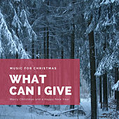 What Can I Give (The Best Christmas Songs) de Various Artists