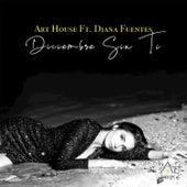Diciembre Sin Ti de Arthouse