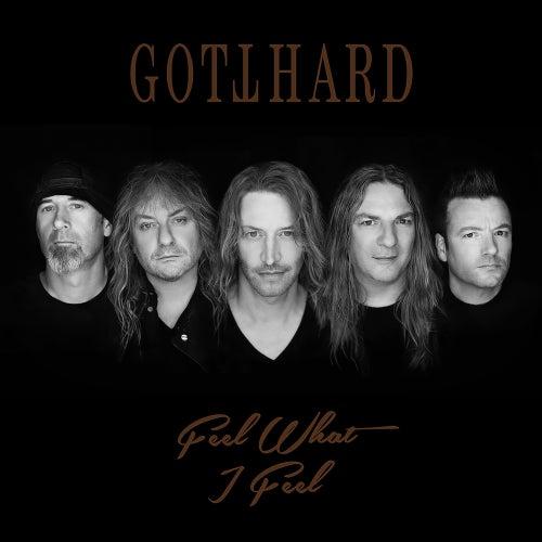 Feel What I Feel (Live, Acoustic 2018) by Gotthard