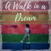A Walk in a Dream by Dr Rahul Vaghela