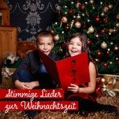 Stimmige Lieder zur Weihnachtszeit von Various Artists