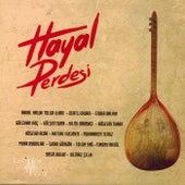 Hayal Perdesi by Various Artists