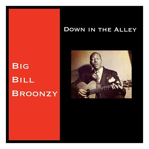 Down in the Alley de Big Bill Broonzy