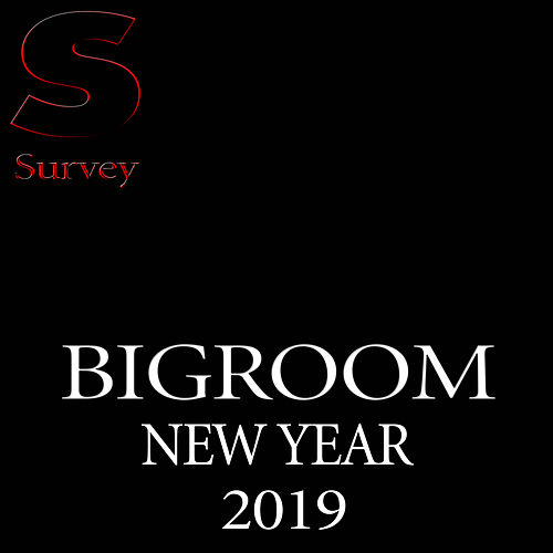 Bigroom Music New Year 2019 de Various