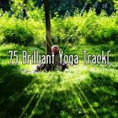 75 Brilliant Yoga Tracks von Massage Therapy Music