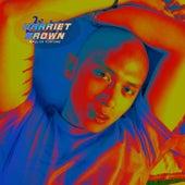 Driver's Seat de Harriet Brown