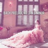 Bach: Prelude No. 2 in C Minor, BWV 846 von Abby Mettry