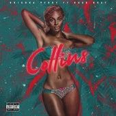 Collins (feat. Hood Brat) de Brianna Perry
