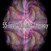 55 Spas Calming Therapy von Massage Therapy Music