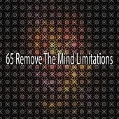 65 Remove The Mind Limitations de Nature Sounds Artists