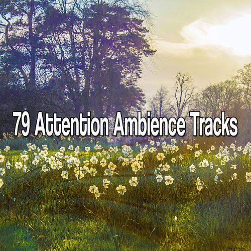 79 Attention Ambience Tracks von Yoga Music