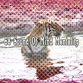 68 Sound Of Mind Mentality de Zen Meditation and Natural White Noise and New Age Deep Massage