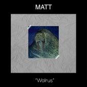 Walrus by Matt