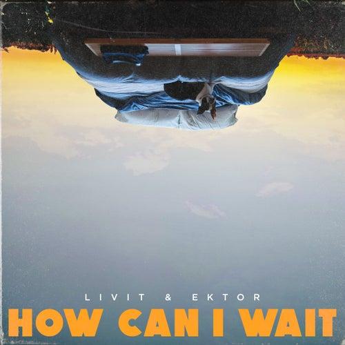 How Can I Wait de Livit
