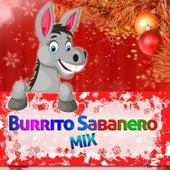 Burrito Sabanero Mix by Various Artists