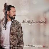 Mesle Fereshteha by Amir Abbas Golab