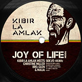 Joy of Life Riddim de Various Artists