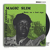 Born on a Bad Sign by Magic Slim