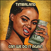 Can We Do It Again by Timbaland