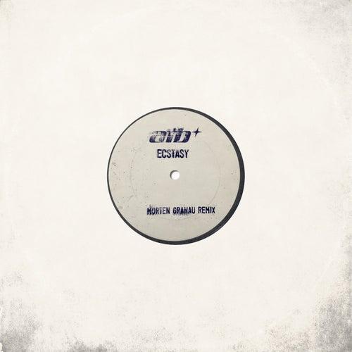 Ecstasy (Morten Granau Remix) von ATB