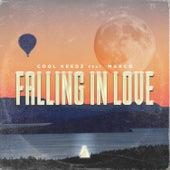 Falling in Love de Cool Keedz