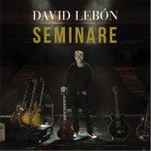 Seminare de David Lebón
