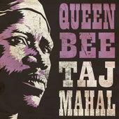 Queen Bee by Taj Mahal