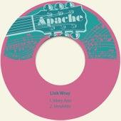 Mary Ann de Link Wray
