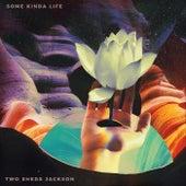 Some Kinda Life by Two Sheds Jackson