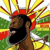 Viva! by Melvin Santhana