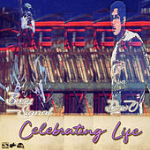 Celebrating Life by Busy Signal