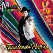Zapateado Perron by Marco Flores y La Jerez