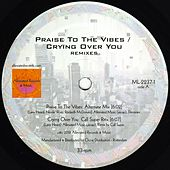 Praise to the Vibes / Crying Over You Remixes by Mr. Fingers