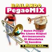 Bailando Pegao Mix de Various Artists