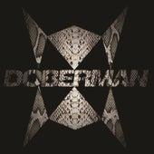 Doberman de Doberman